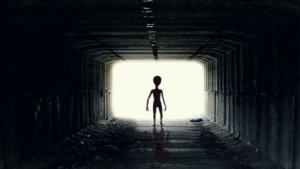 外星人真降落了?他冒险闯森林惊见「幽浮」 真相曝光