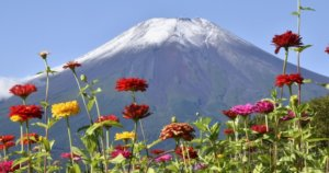 富士山今年首次披上银装 比去年早24天