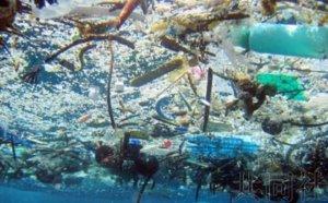 日本将牵头制作海洋微塑料垃圾污染地图