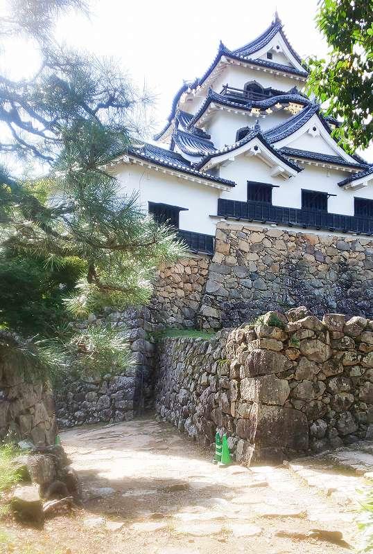 天守裏手の西の丸から撮影した彦根城