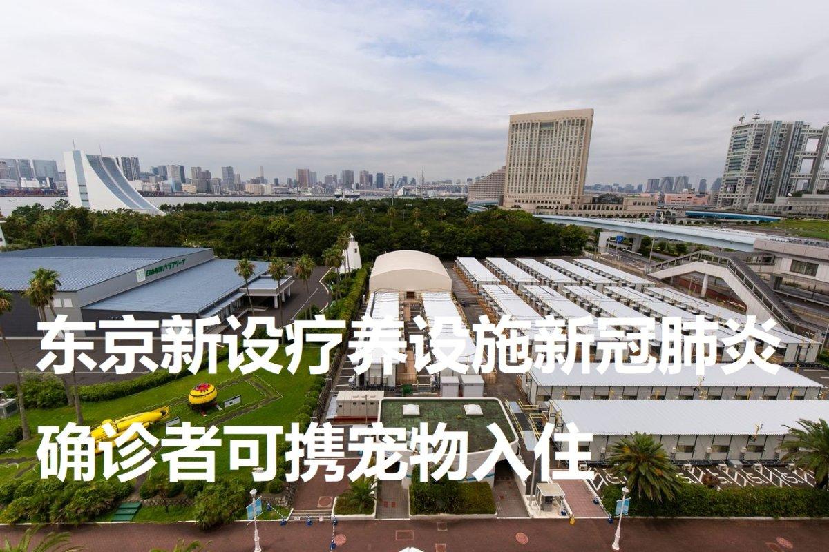 东京新设疗养设施新冠肺炎确诊者可携宠物入住