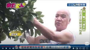 我们一家人PLUS/不向命运低头 他靠韧性种出麻豆柚子
