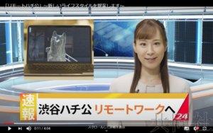 话题:秋田制作八公犬回到故乡的视频欲吸引移居