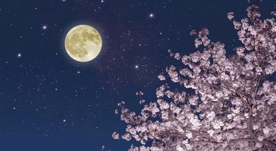 中秋恭祝月光菩萨圣诞快乐  作者:江东良一20210424