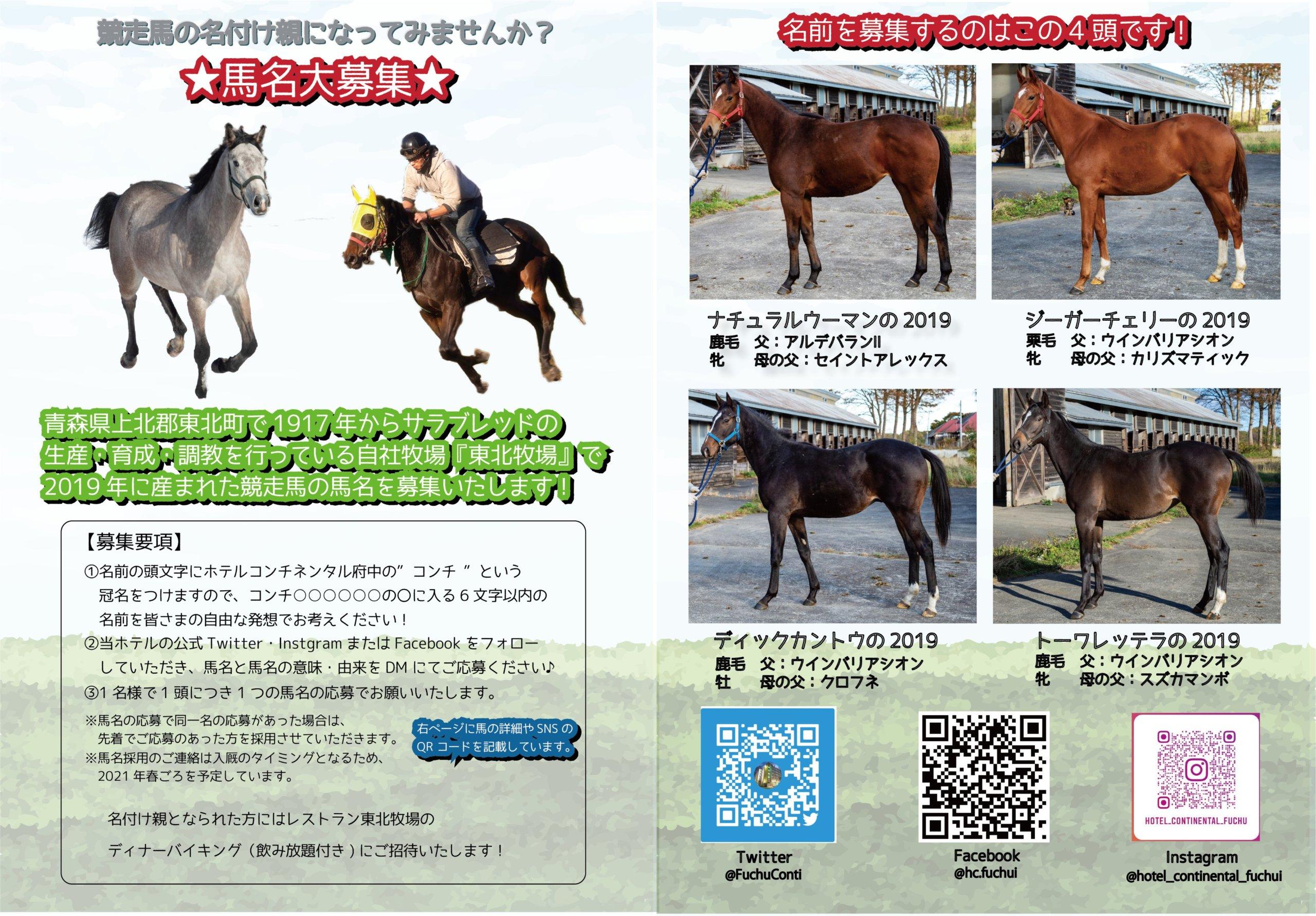 ホテルコンチネンタル府中、将来の競走馬の名前募集【連載:アキラの着目】