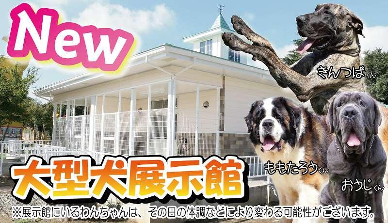 90犬種500頭以上の名犬・珍犬と世界最大級の木造犬展望台も、つくばわんわんランド【連載:アキラの着目】